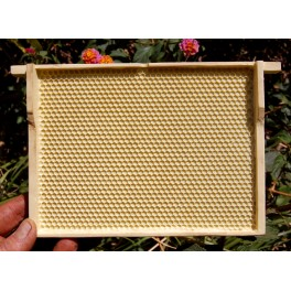 artificial combs 4,9mm for MiniPlus hives